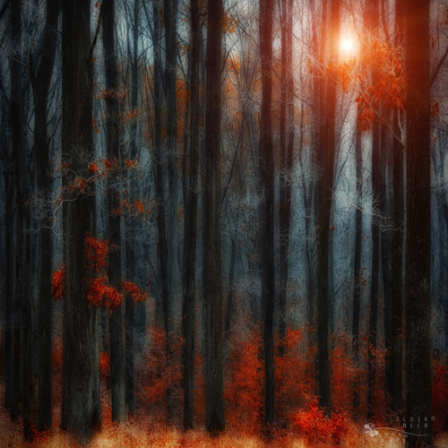 Stunning Autumn Photography by Ildiko Neer