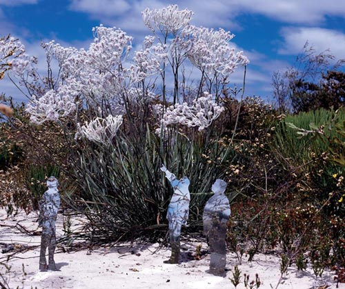Stunning Mirrored Sculptures by Maslen and Mehra