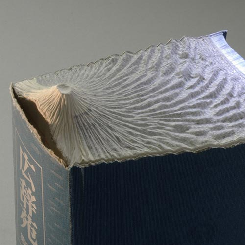 Stunning Carved Book Sculptures by Guy Laramee