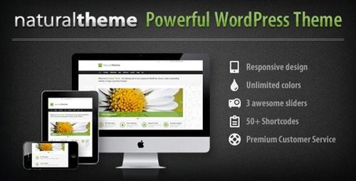 Responsive Portfolio WordPress Themes