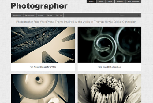 19 Free High Quality WordPress Portfolio Themes 2012