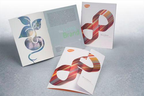 Beautiful Brochure Designs