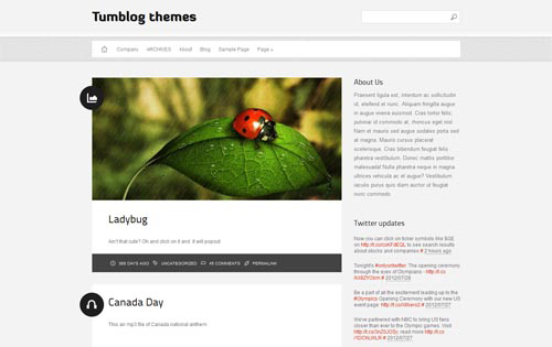 Tumblr Style WordPress Themes
