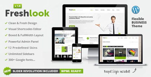 wordpress themes 30 50 Popular Premium WordPress Themes
