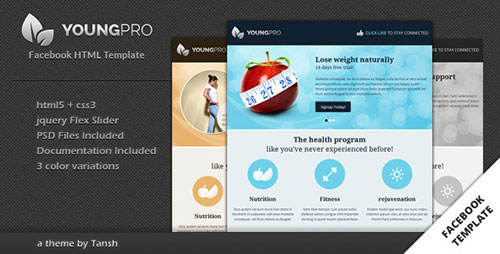 Youngpro HTML Facebook Template