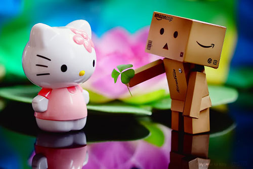My love for Kitty HD Wallpaper
