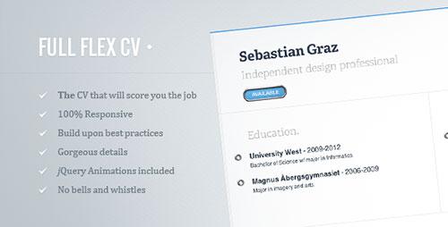 professional premium resume templates