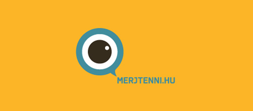Eye Logo Designed