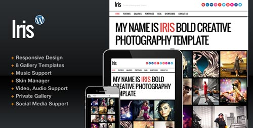 Bold WordPress Themes
