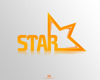 35+ Impressive Star Logo Design Inspiration