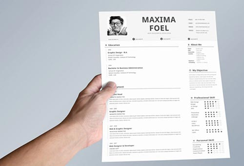 professional resume that will lead you to success