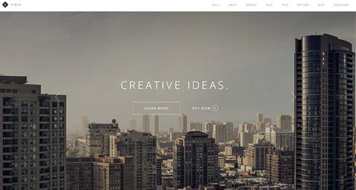 Premium Portfolio WordPress Themes