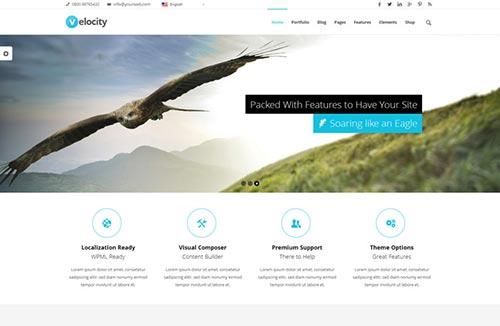 Premium WordPress Themes 2014