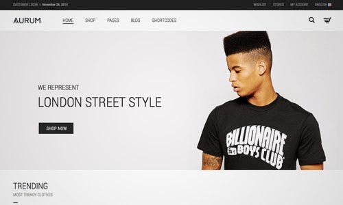 40+ Best Responsive eCommerce WordPress Themes