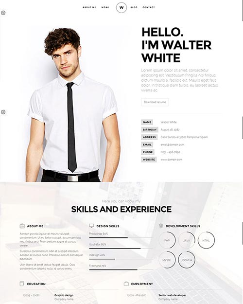 Attractive Online Resume Templates  Attractive Resume Templates