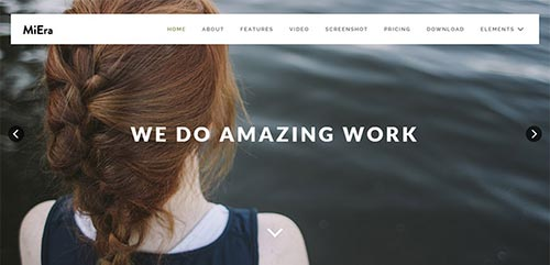 Impressive WordPress Theme Designs 2016