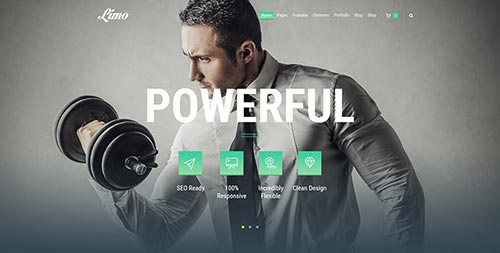 59 Impressive WordPress Theme Designs 2016