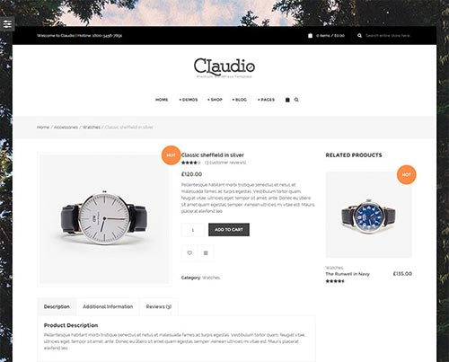wordpress themes product page designs