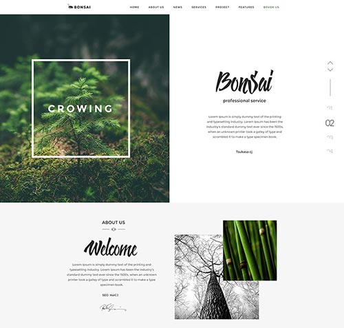 Web Design Concepts in PSD Format