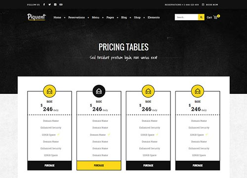 WordPress Themes with Pricing Tables